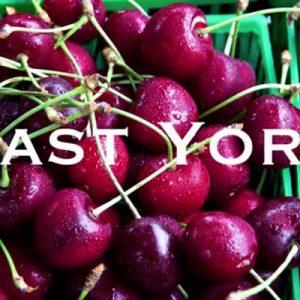 East York Farmer's Market logo